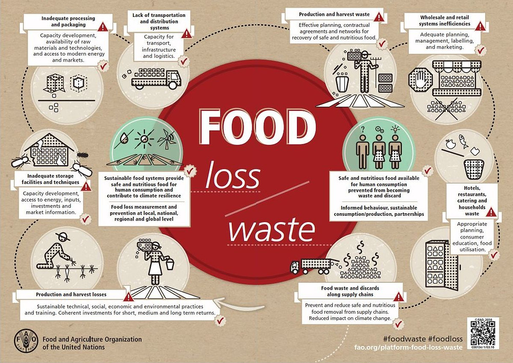 FAO, food waste, food loss, desperdício alimentar