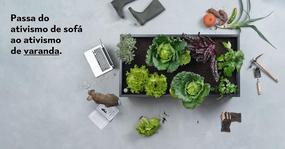 hortas urbanas, ecologia, sustentabilidade, corporatividade