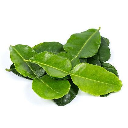 folhas de lima kaffir, kaffir lime leaves