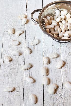 Feijão branco, Feijão fidalgo, Kidney Beans