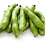 Favas, Leguminosas, faba, broad beans