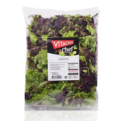 Saladas, Vitacress