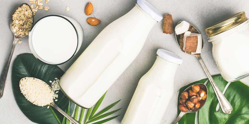 vegan, vegetariano, non dairy milk, leites vegetarianos, bebidas vegetais