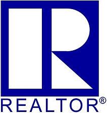 Realtor Blue.JPG