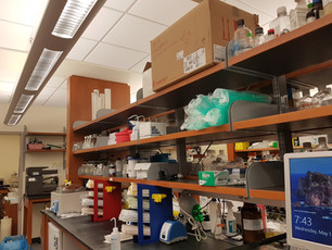 Building the lab (Feb 2019)