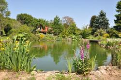 La Herpinière Pond