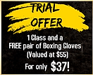 trial offer.png
