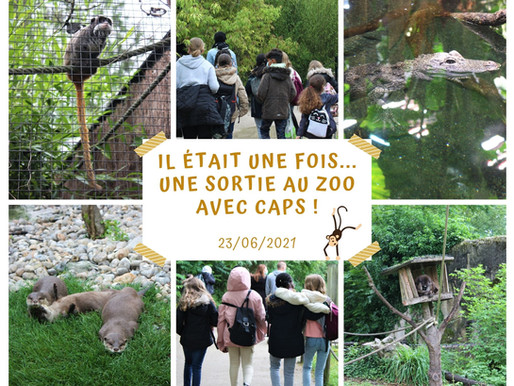 Sortie au zoo d'Amiens