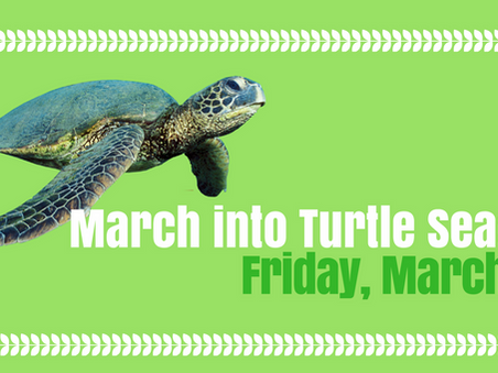March into Turtle Season: Friday, March 23
