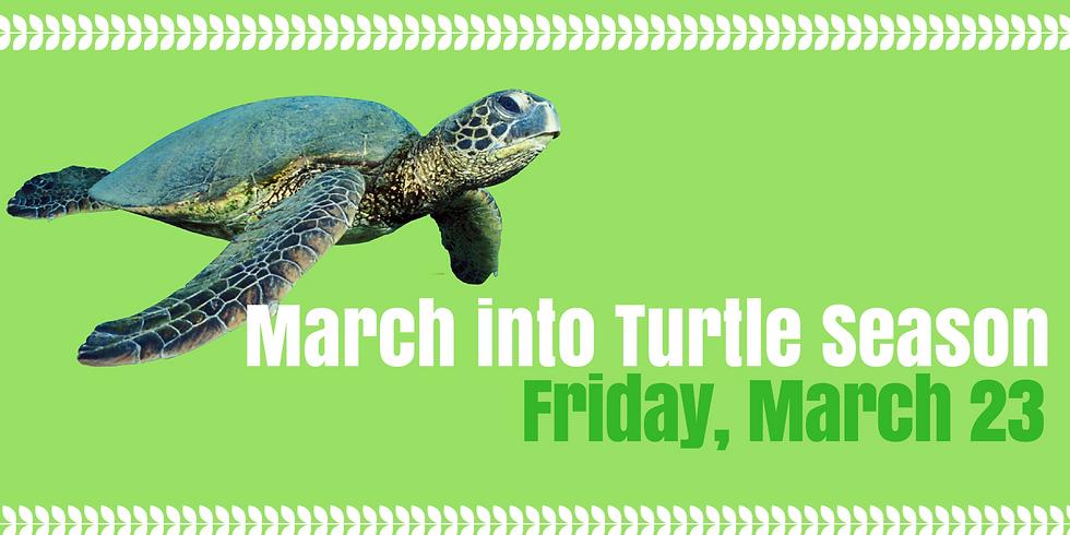 March into Turtle Season