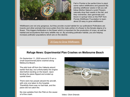 October 2020 Newsletter