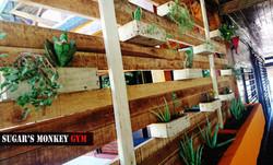 gym_green_wall_sugars_monkey_playa_grande_surf_poshtel_hotel_surf_school_trip_surfcamp_costa_rica_ta