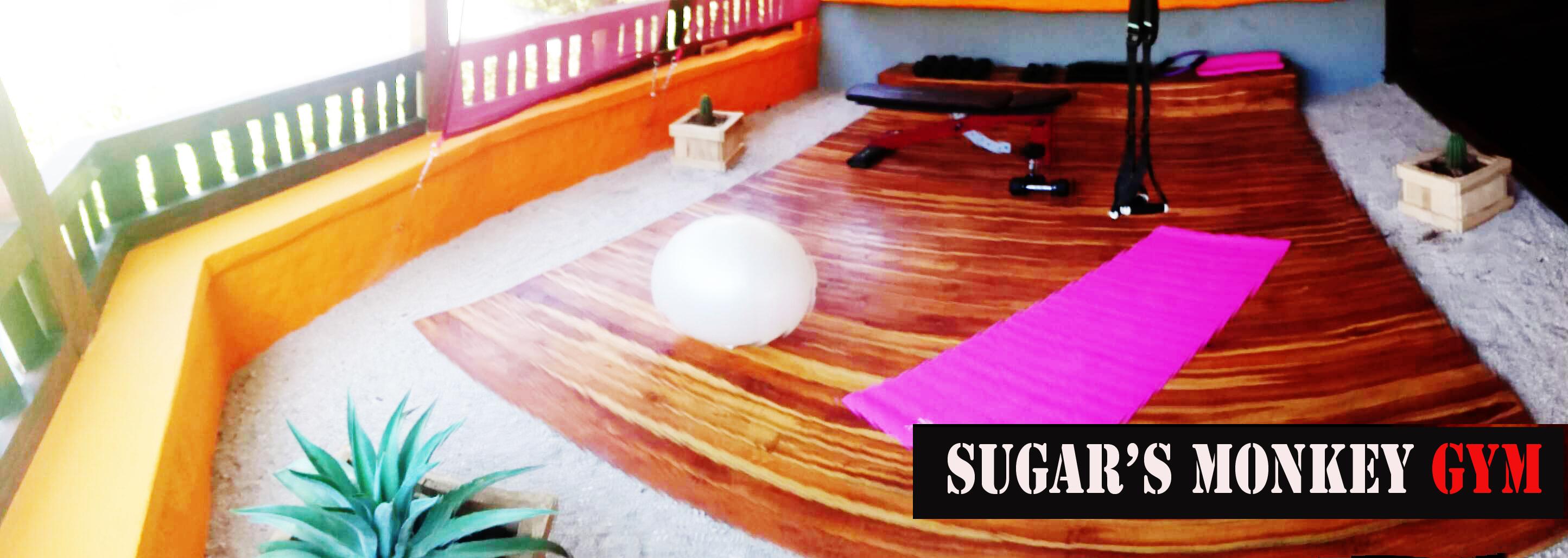 gym_space_2_sugars_monkey_playa_grande_surf_poshtel_hotel_surf_school_trip_surfcamp_costa_rica_tamar