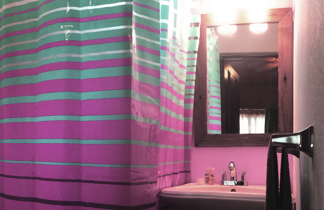 bathroom01_room2_sugars_monkey_playa_gra