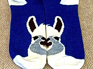 AlpacaFaceSocks