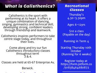 Term 4 Recreational Classes