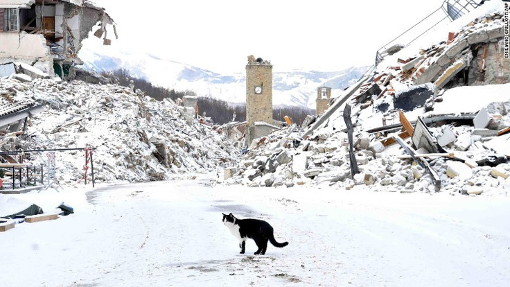 Powerful Earthquakes Rock Italy