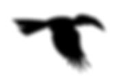 Saola-Foundation_LOGO-final options_B -