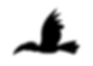 Saola-Foundation_LOGO-final options_A -