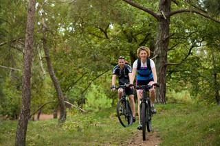 Trails to bike or hike