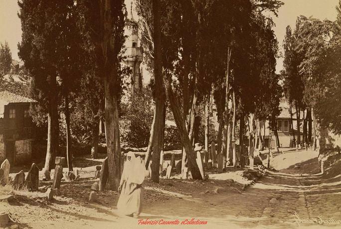 Cimetiere a Scutari 257. 1890s