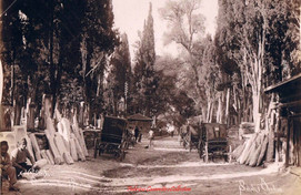 Cimetiere turc a Scutari 263. 1890s