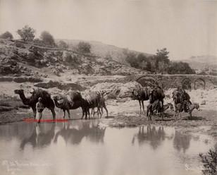 Riviere Melis, pres de Smyrne 26. 1890