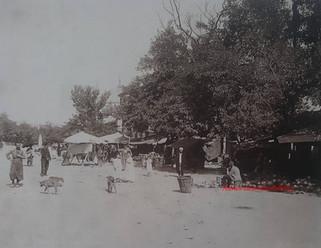 Place du Sultan Ahmed 846. 1890s