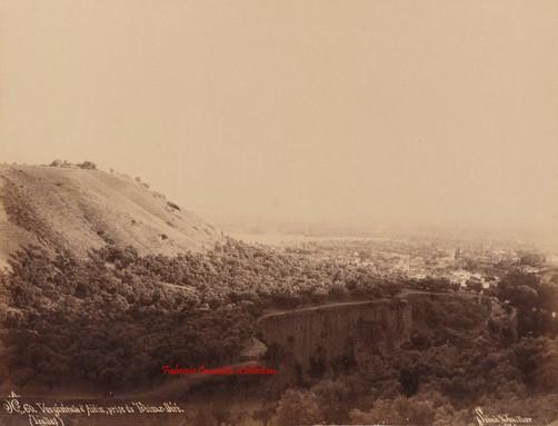 Vue generale d'Aidin, prise du Tchinar Dere (Tralles) 60. 1890