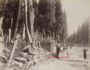 Cimetiere a Scutari 260. 1890s