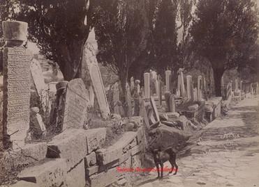 Cimetiere turc 262. 1880s