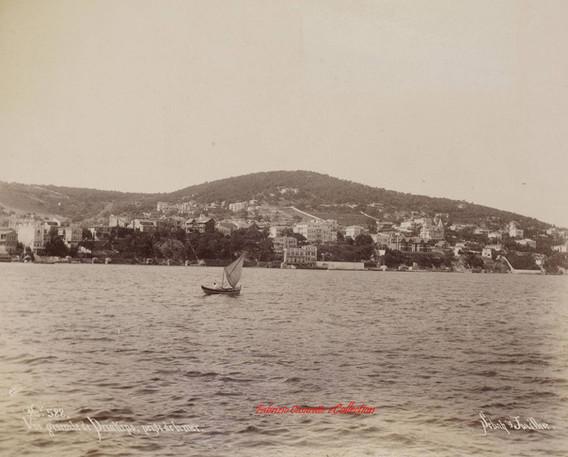 Vue generale de Prinkipo, prise de la mer 588. 1890s