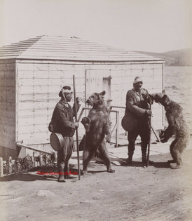 Joueurs d'Ours. 1890s