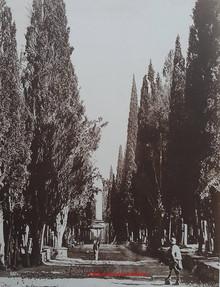 Cimetitere a Scutari 261. 1890s