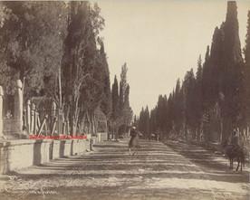 Cimetiere Turc a Scutari 257. 1890s (2)