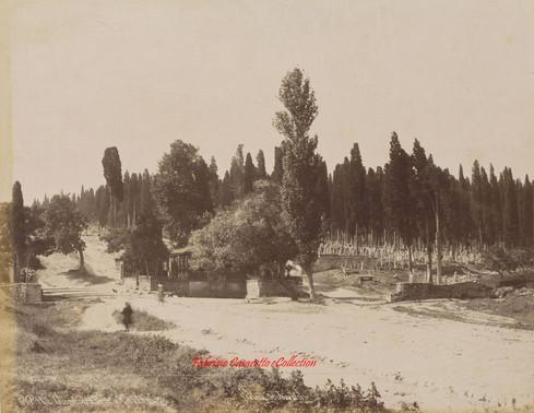 Cimetiere turc a Scutari 180. 1890s