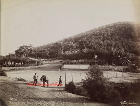 Iles des Princes. Vue de Dias Kielos a Prinkipo 5. 1890s