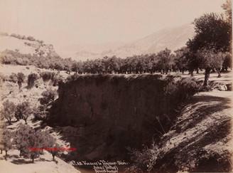 Vue dans le Tchinar Dere. Aidin (Tralles) 65. 1890