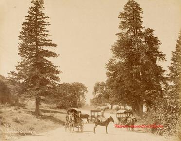 La route de Tchekirgue, Brousse, 4. 1890s