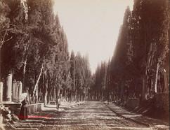 Cimetiere turc a Scutari 258. 1890s