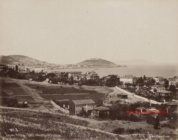Iles des Princes. Halki. vue prise de Prinkipo 8. 1890s