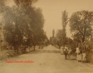 Brousse. xxx 126. 1890s