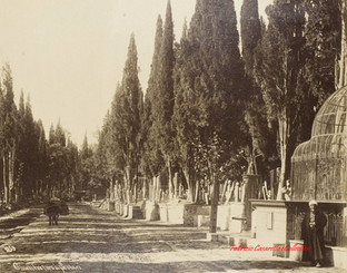 Cimetiere a Scutari 259. 1890s