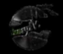 TransylVinyl Logo 2017.png