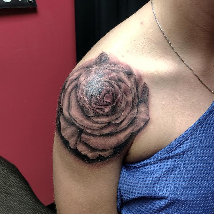 nooch rose
