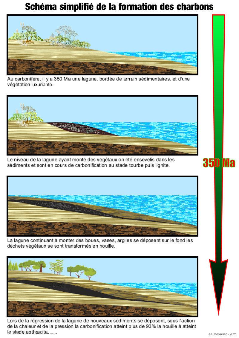La formation du charbon, schéma simplifié.