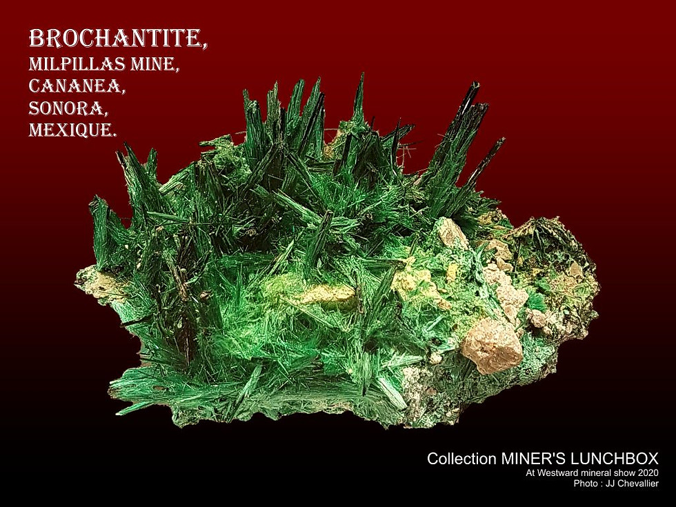 Brochantite.