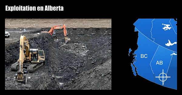 Exploitation d'ammolites en Alberta