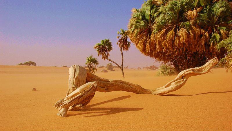 L'Ennedi dans le Sahara au Nord-est du Tchad.