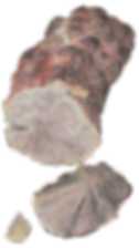 nodule de pyrite et fragments